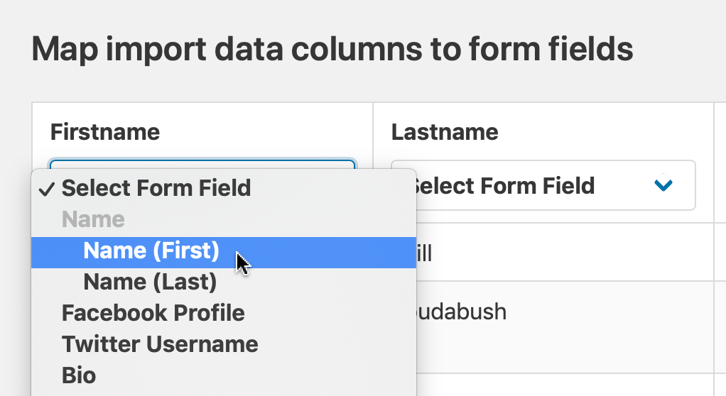 Choose which field the column data should be imported into